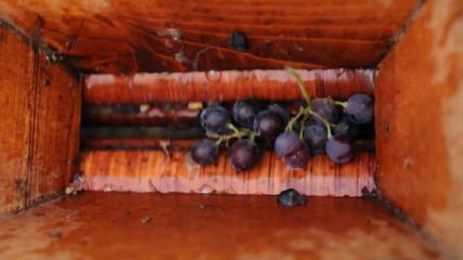 raisins écrasés