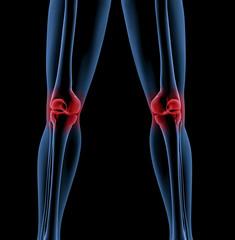 Legs of a medical skeleton