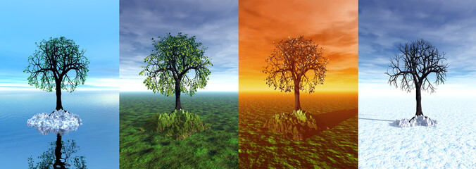 Four seasons. Tree in 3d graphic