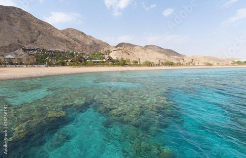 Coral Reef - 26756742