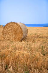 Stacks of straw