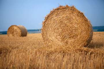 Stack of hay