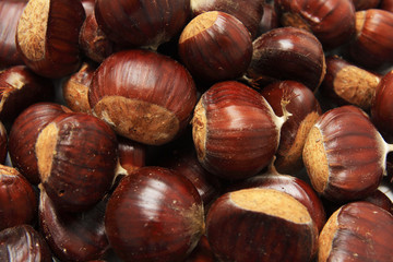 Isolated macro image of raw chestnuts