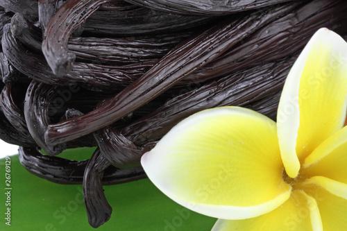 fleur de frangipanier sur gousses de vanille Bourbon