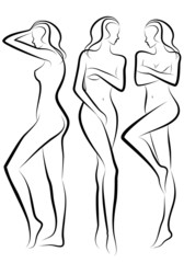 female body, vector