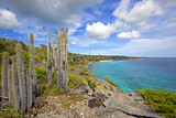 View over the beautiful coastline on Bonaire