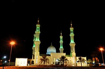 Mosque in  night in United Arab Emirates