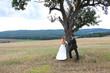 Brautpaar steht an einem Baum