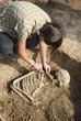 Archaeologist excavating a grave buried skeleton