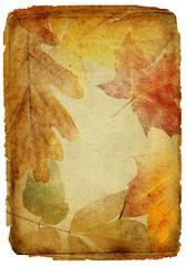 vintage autumn framed background