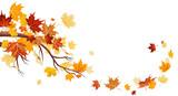 Fototapety Maple leaves