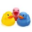 Drei Badeenten