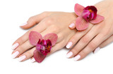 Fototapety Beautiful hand with perfect nail pink manicure and purple orchid