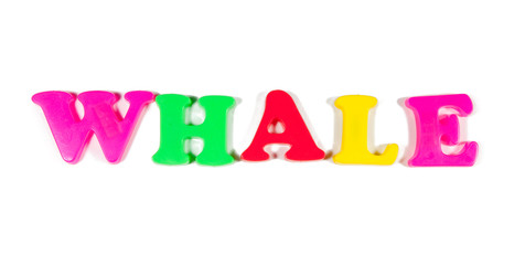 whale written in fridge magnets