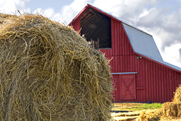 Bales of Hay by Red Barn