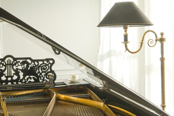 detail of grand piano and floor lamp