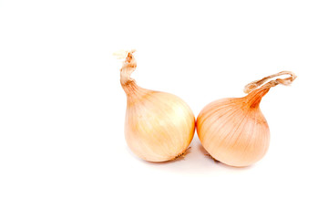 Detail of onions on white background