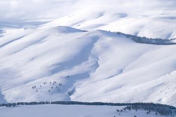 kış doku