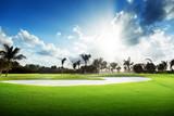 Fototapety sunset on golf field