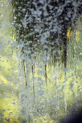 Wassertrofpen