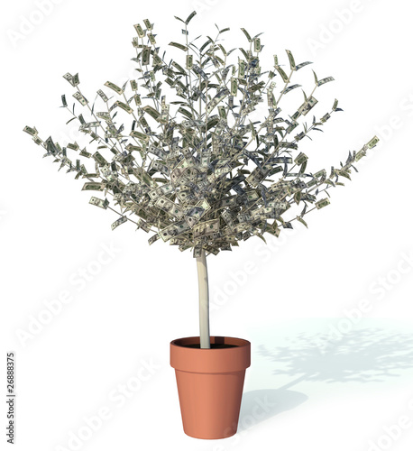 moneytree growing 10 dollar bills as leaves