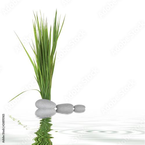 Zen Peace - 26893163