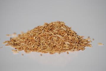 cumin en graines sèches
