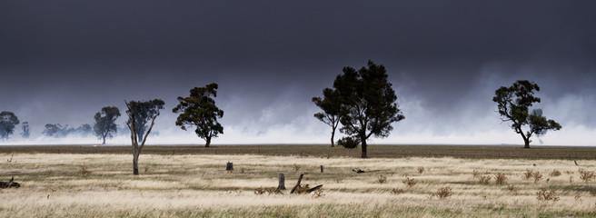 Bushfire Panorama