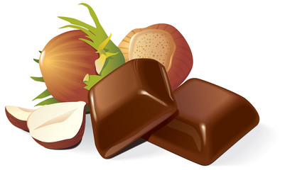 Chocolate pieces and hazelnuts composition. Vector