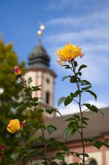 Rosen vor der Kirche