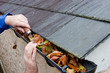 canvas print picture - Workman Clearing Autumn Leaves from Gutter