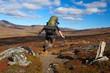 springender Wanderer