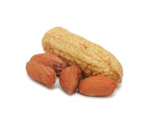 Peanut, isolated on white