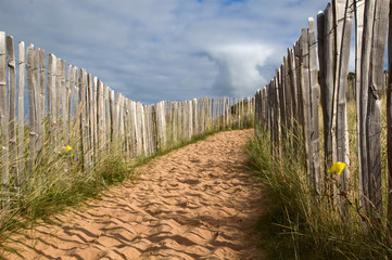 a sandy path with fence in dunes
