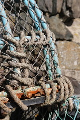 Lobster pot closeup
