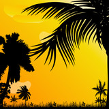 background with palm trees illustration
