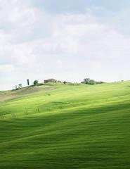 Toscane17