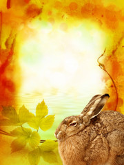 romantic frame with young little hare