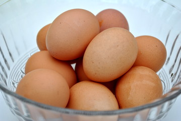 Bowl of Brown Raw Eggs