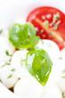 italian tomato mozzarella close up