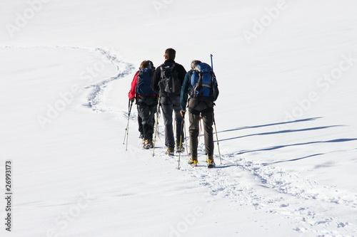 Seilschaft am Gletscher - 26993173