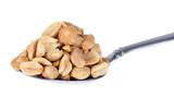 Spoonfull of Peanuts