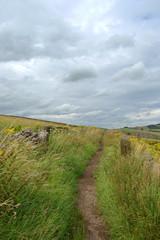 Countryside path Derbyshire