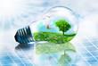canvas print picture - lampadina ecosostenibile