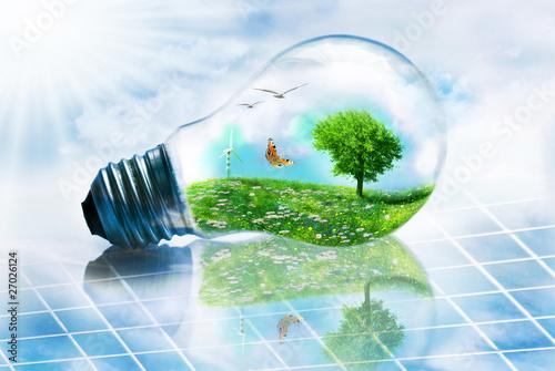 Leinwanddruck Bild lampadina ecosostenibile