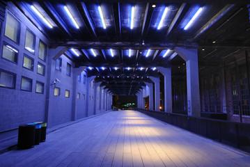 Tunnel With Purple Fluorescent Lighting
