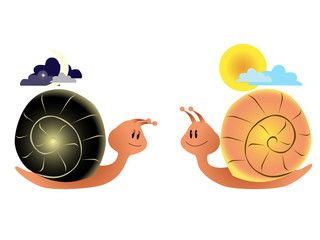 Night snail and day snail