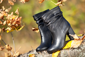 Pair of black female boots in autumn park