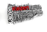 Kaizen 3D words