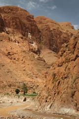 Todrha-Schlucht in Marokko, Afrika
